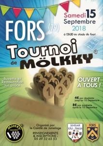 Tournoi Mölkky